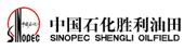 中国石化胜利油田